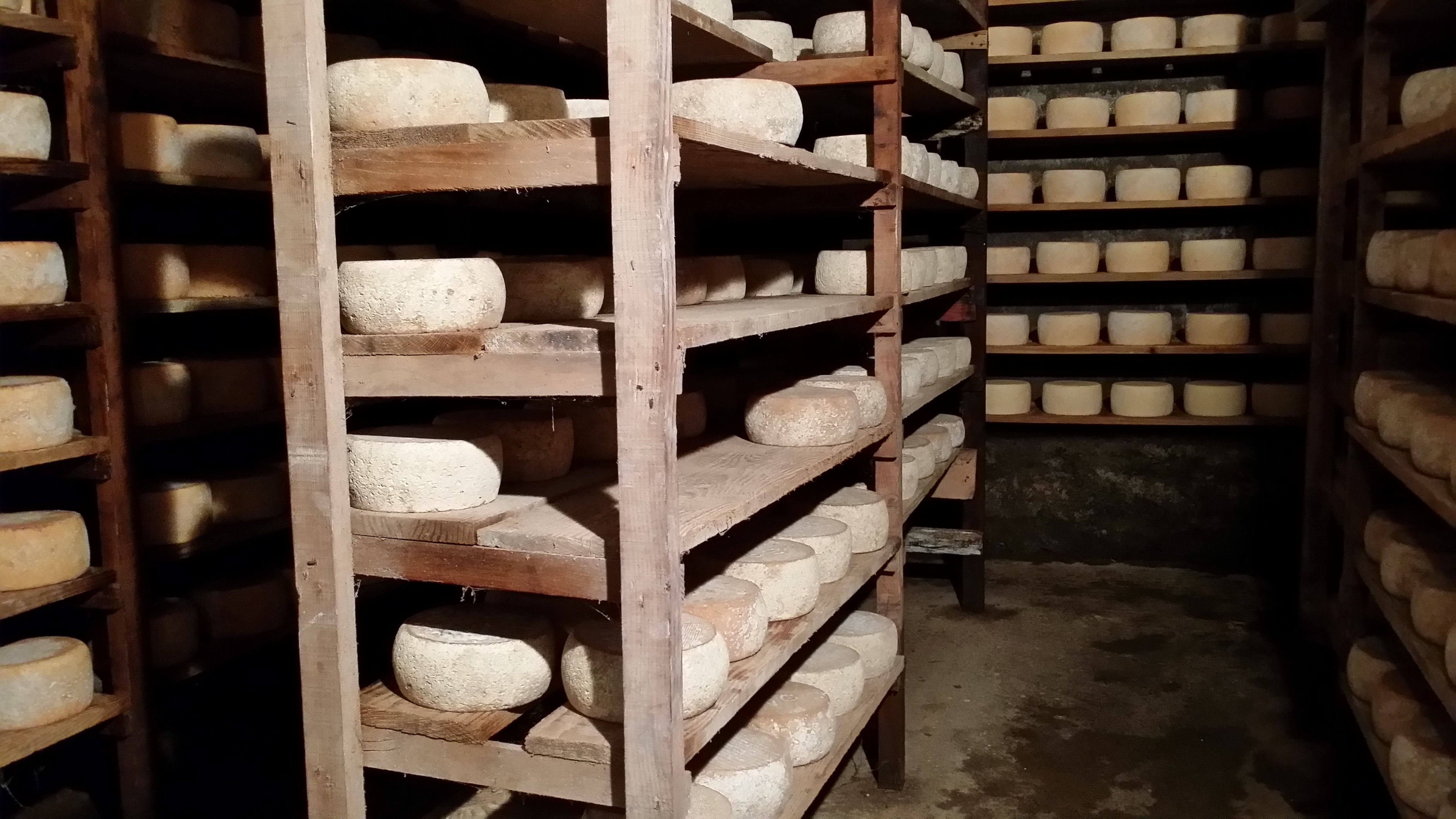 fromage_pyrenees_tomme_luchon_fromagerie_poubeau